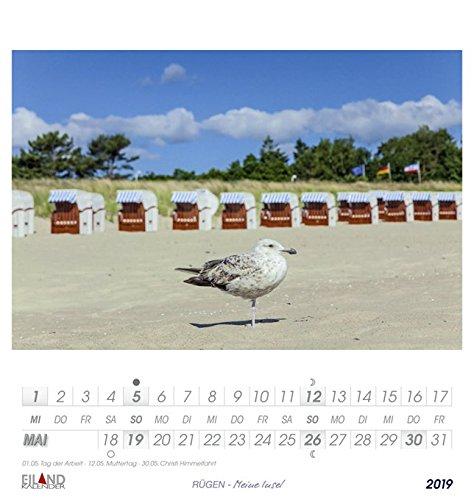 Rügen - Kalender 2019: Meine Insel - 6